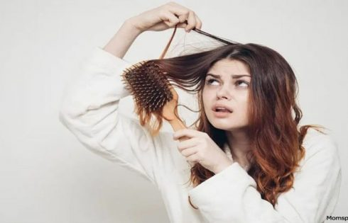 Tips on how to Stop Hair Loss in Females